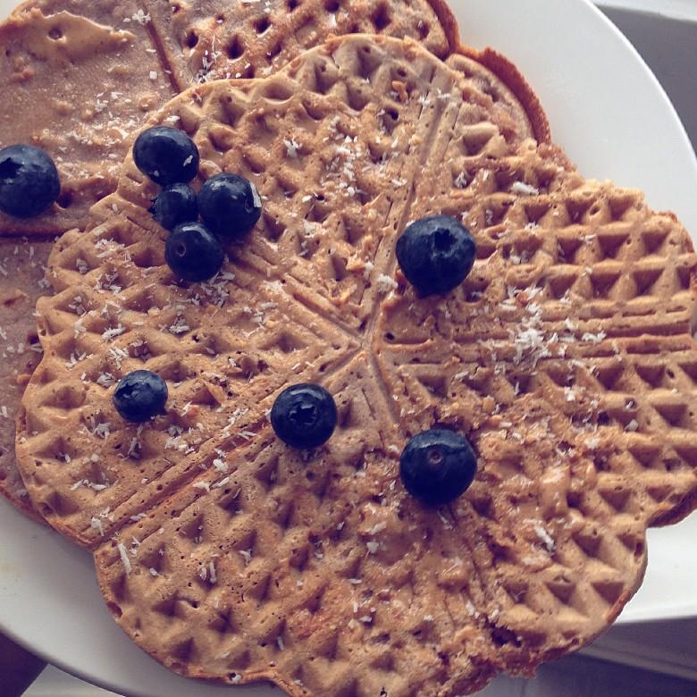 Gluten Free Protein Waffles