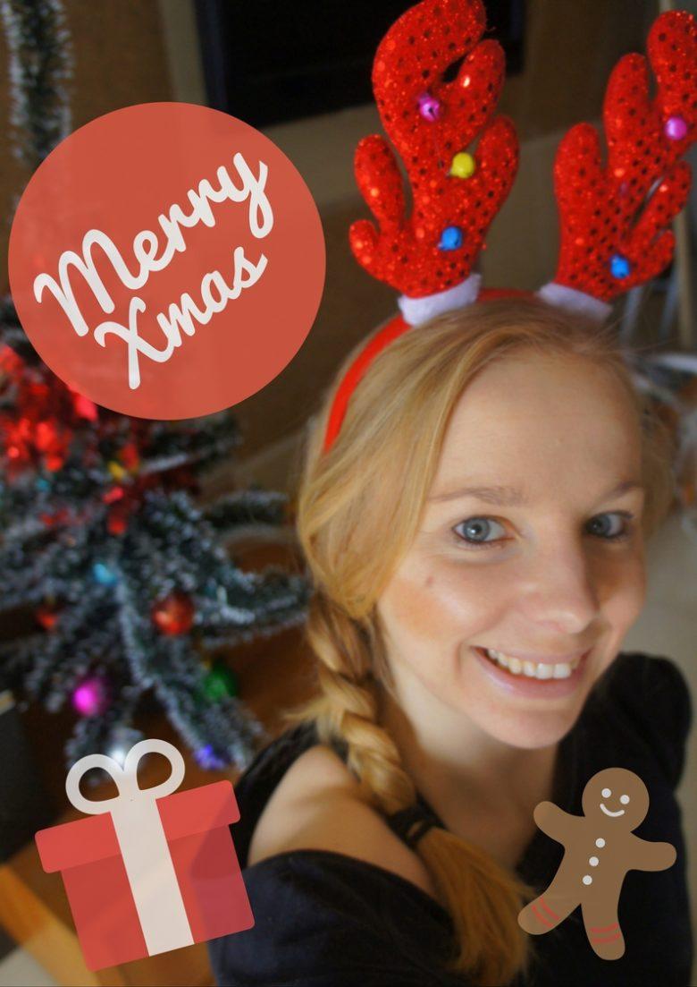 runagnessrun christmas card